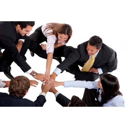 como crear un buen equipo de trabajo